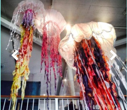 The Jellies Installation